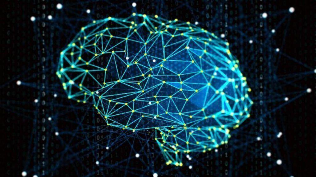 cerebro em analise e crescimento