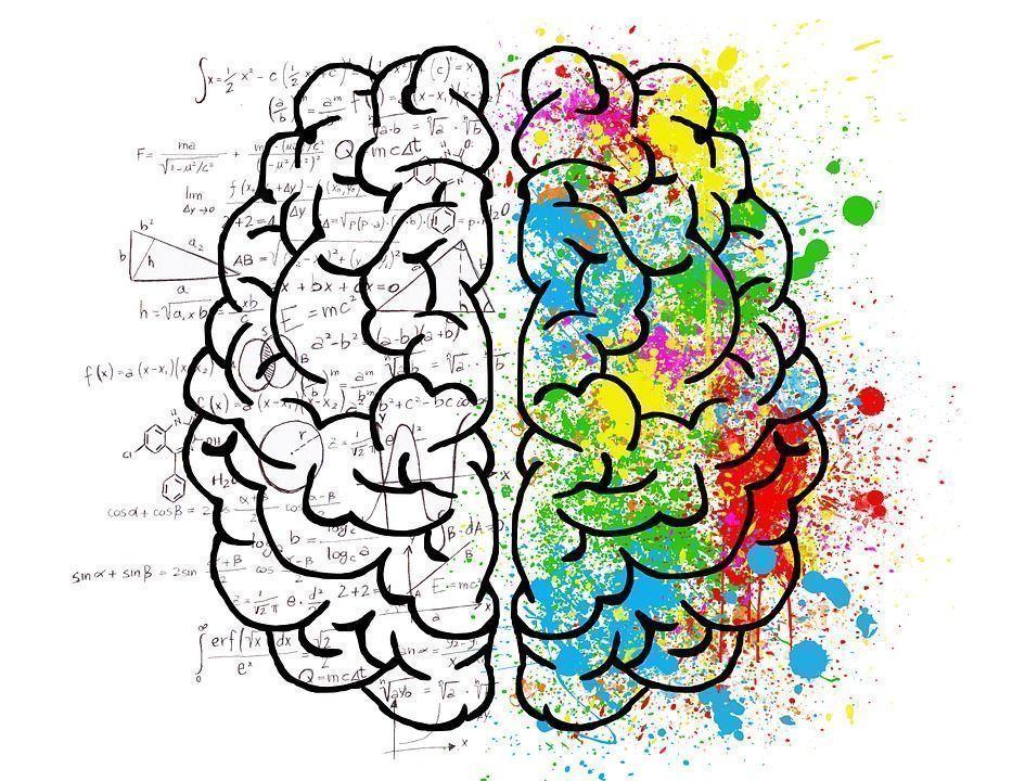 cerebro na psicologia