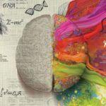 Como acalmar a mente