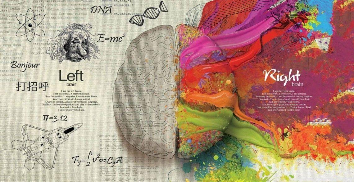 cerebro reagindo ao mundo