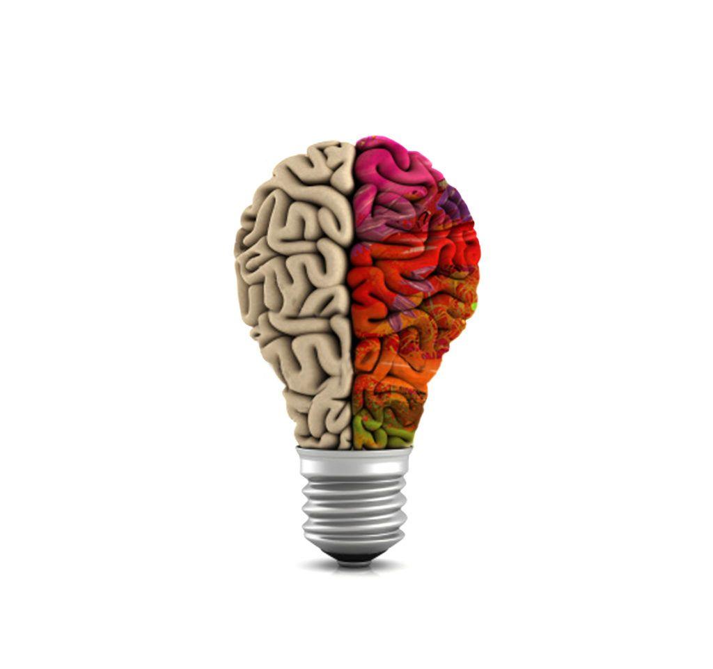 criatividade no cerebro