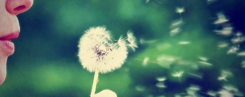 15 maneiras simples de manter o bom humor