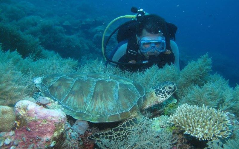 Instrutor de mergulho