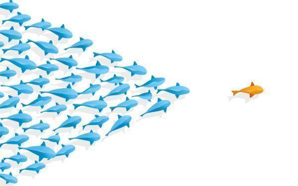 5 competências de um líder de sucesso